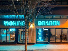Woking Dragon 11